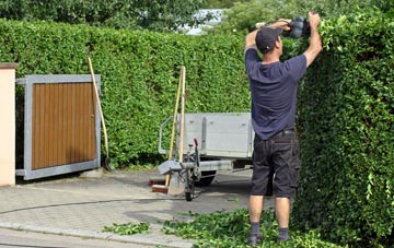 professional Brampton Street hedge cutting services