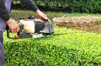 Brampton Street hedge trimming services